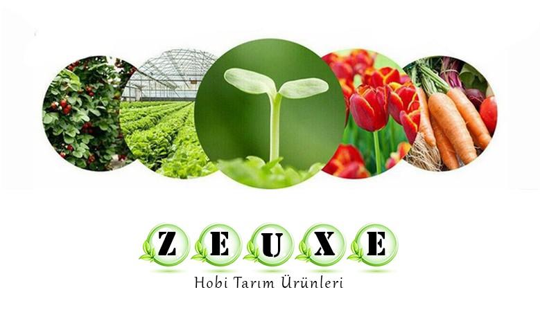 Zeuxe Bitki Yetiştirme Kabinleri Zeuxe Grow Box